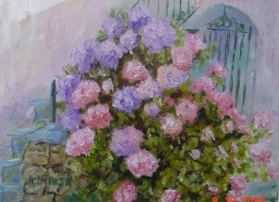 4.) Hortensien / Hydrangea